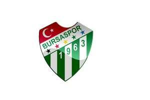 Bursa Spor